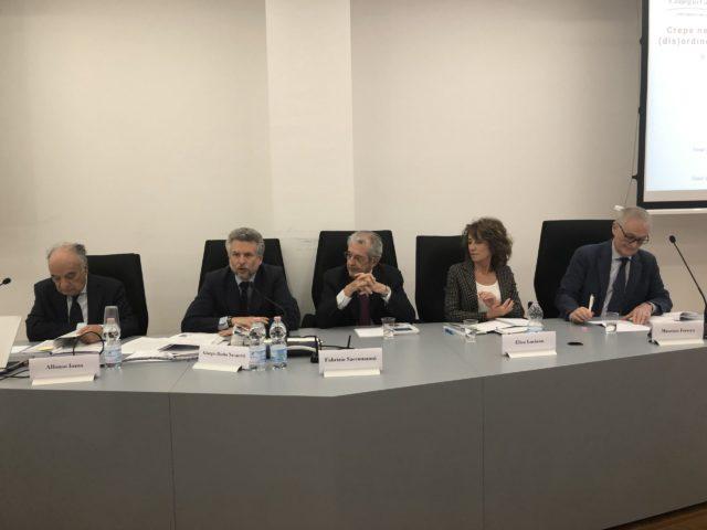 A.Iozzo, G.Barba Navaretti, F.Saccomanni, E.Luciano, m.Ferrera